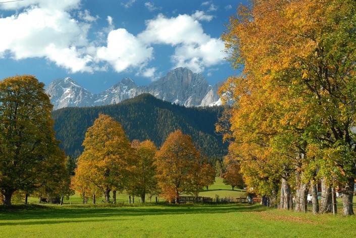 herbstliche Naturlandschaft in Ramsau am Dachstein