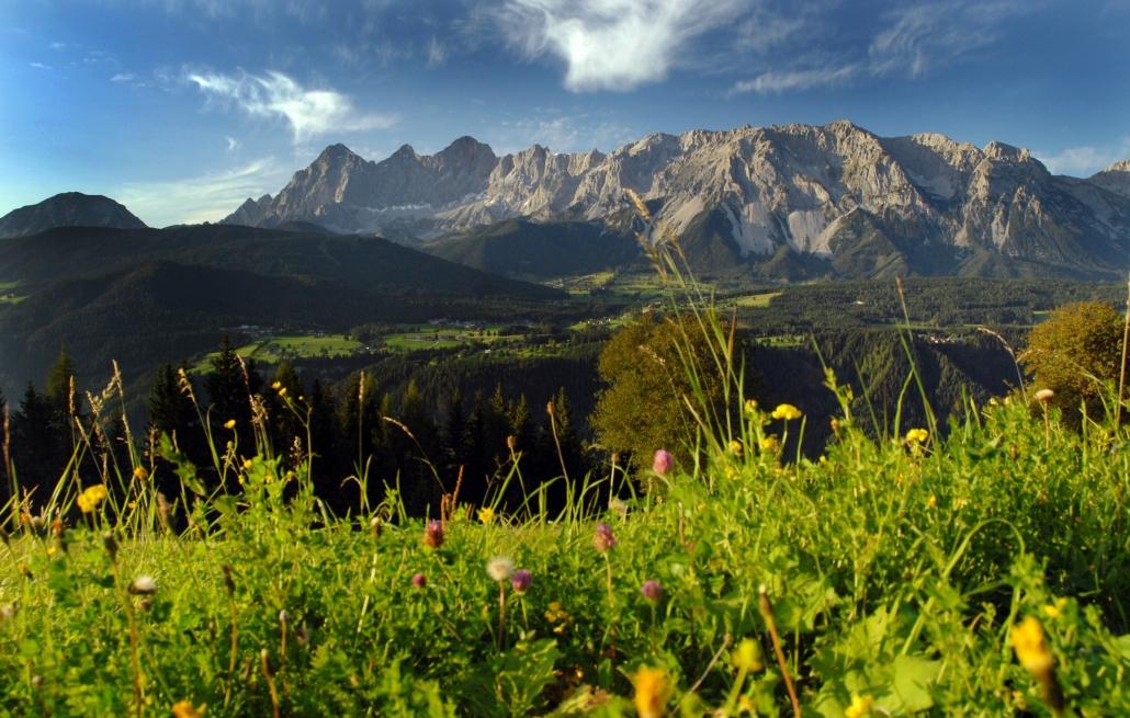 Ausblick auf das Hochplateau Ramsau am Dachstein - Pension Alpina